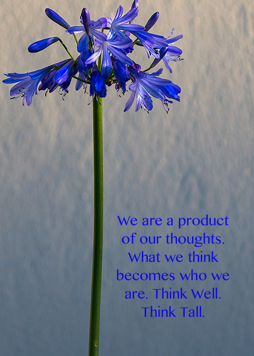 Our thoughts become us