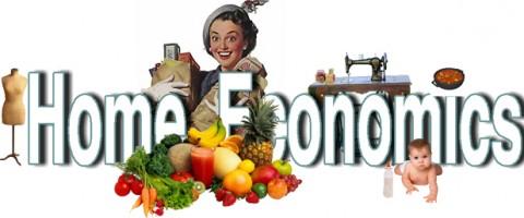 cropped-homeconomics-288a0kr